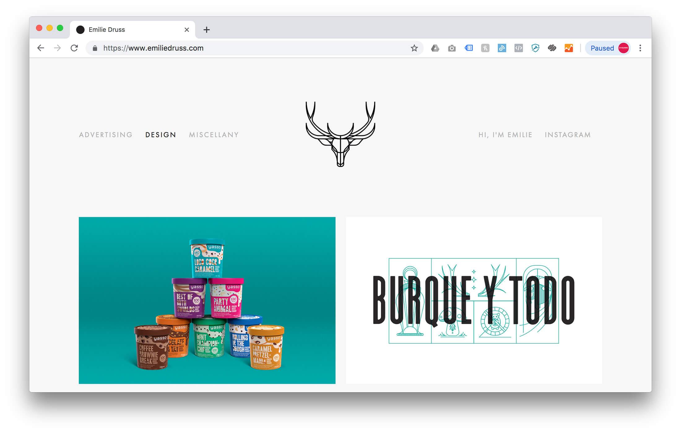 Graphic Design Portfolio Examples - Emilie Druss