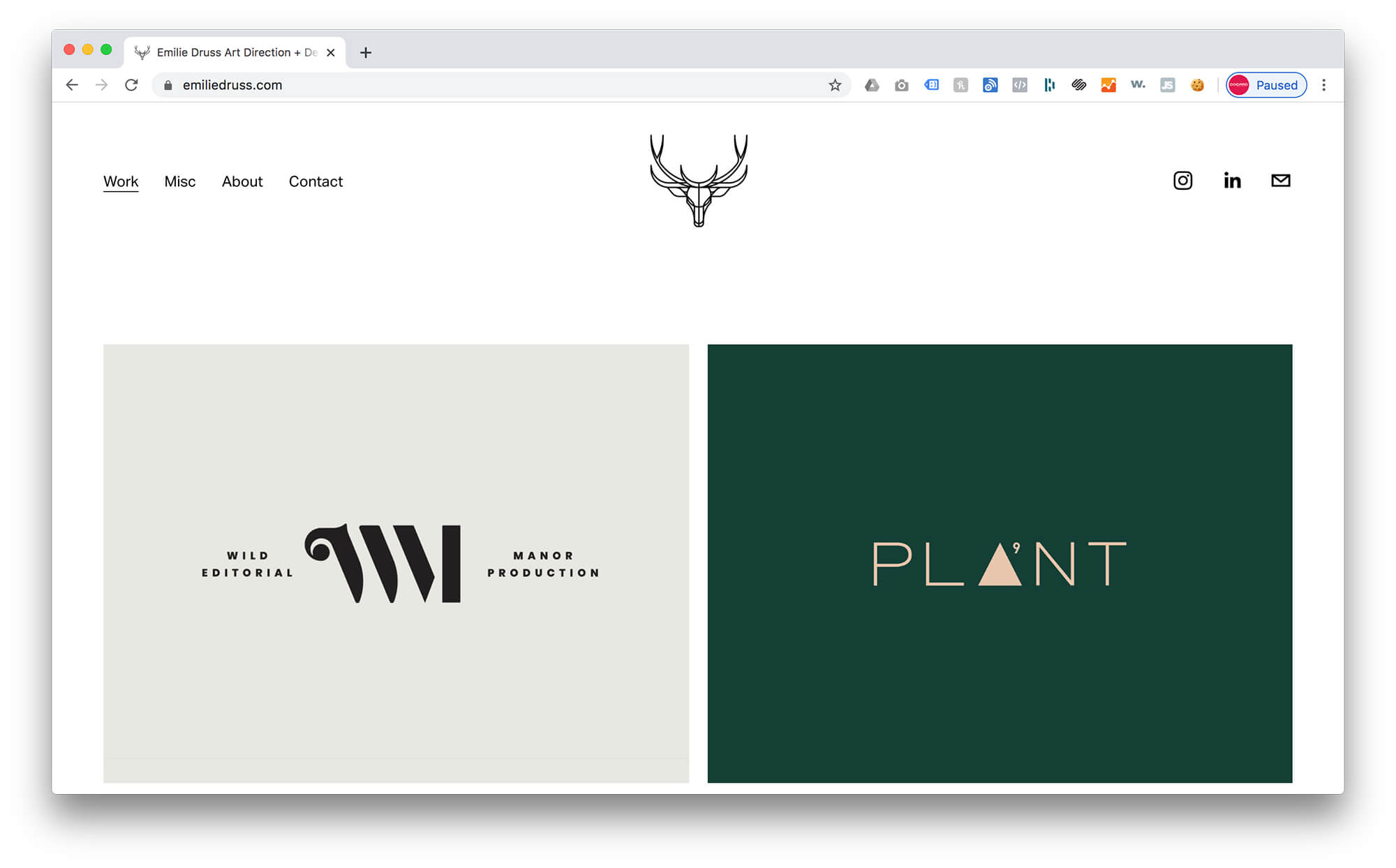 Emilie Druss | Squarespace Graphic Design Portfolio Example 2